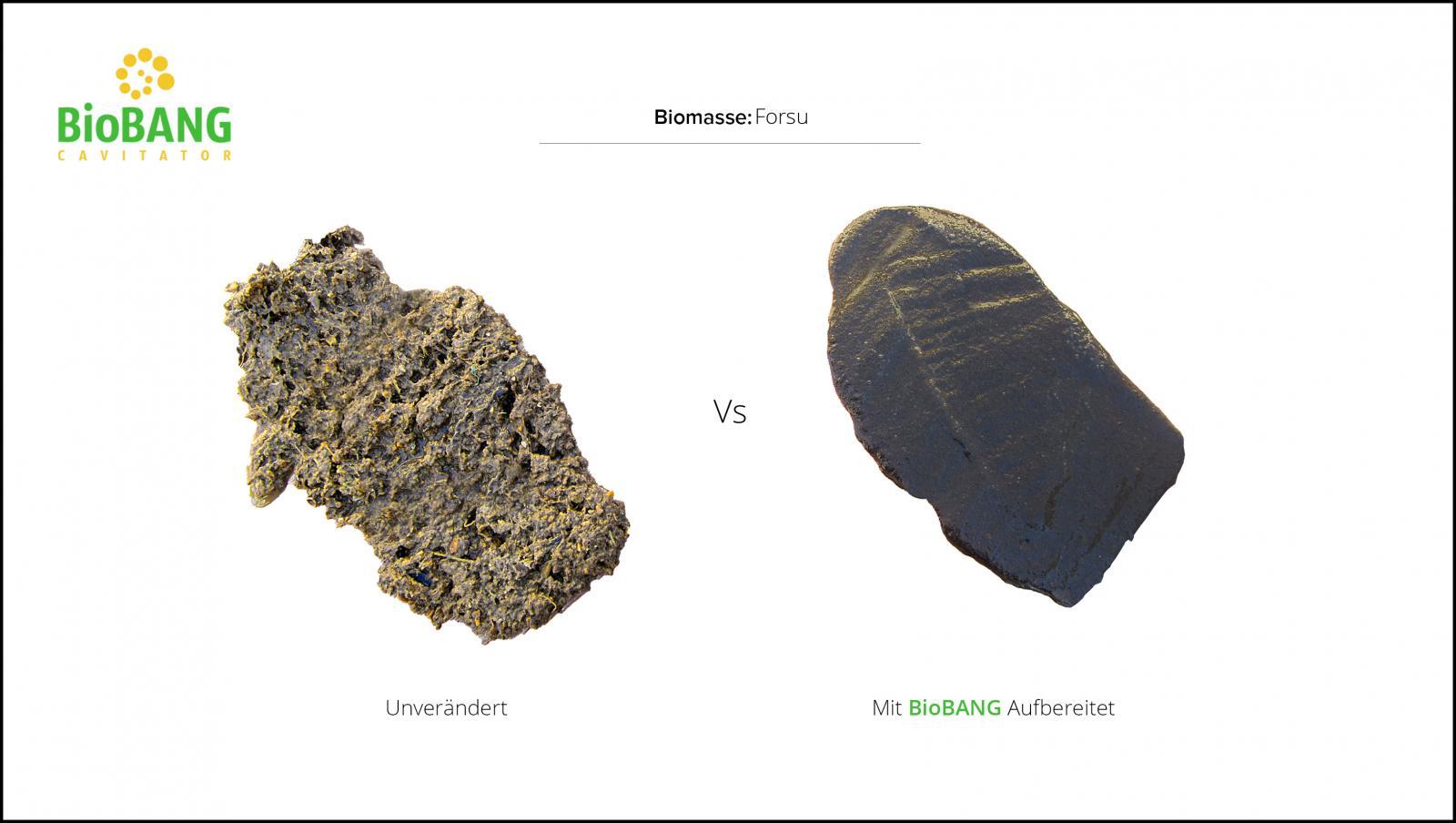 Behandlung_von_Biomasse_forsu