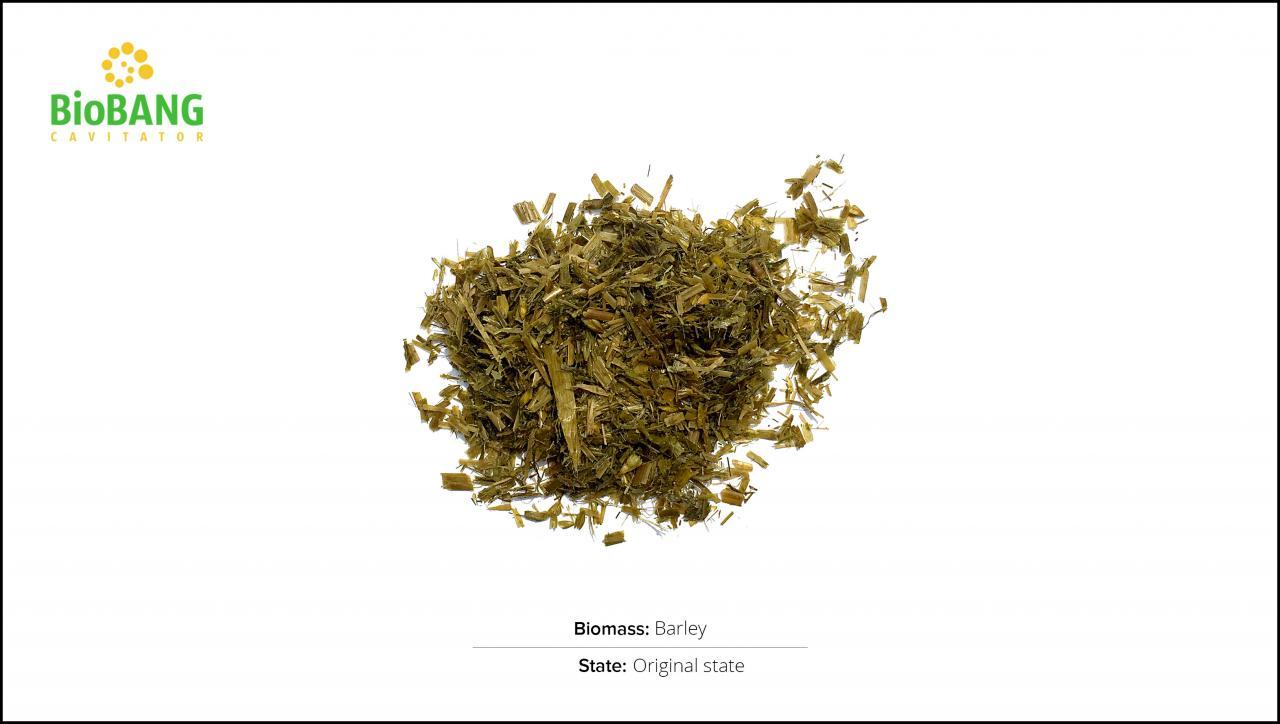 biomass-test-barley-1