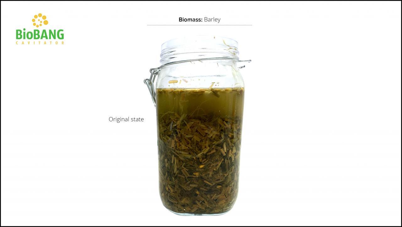 biomass-test-barley-5