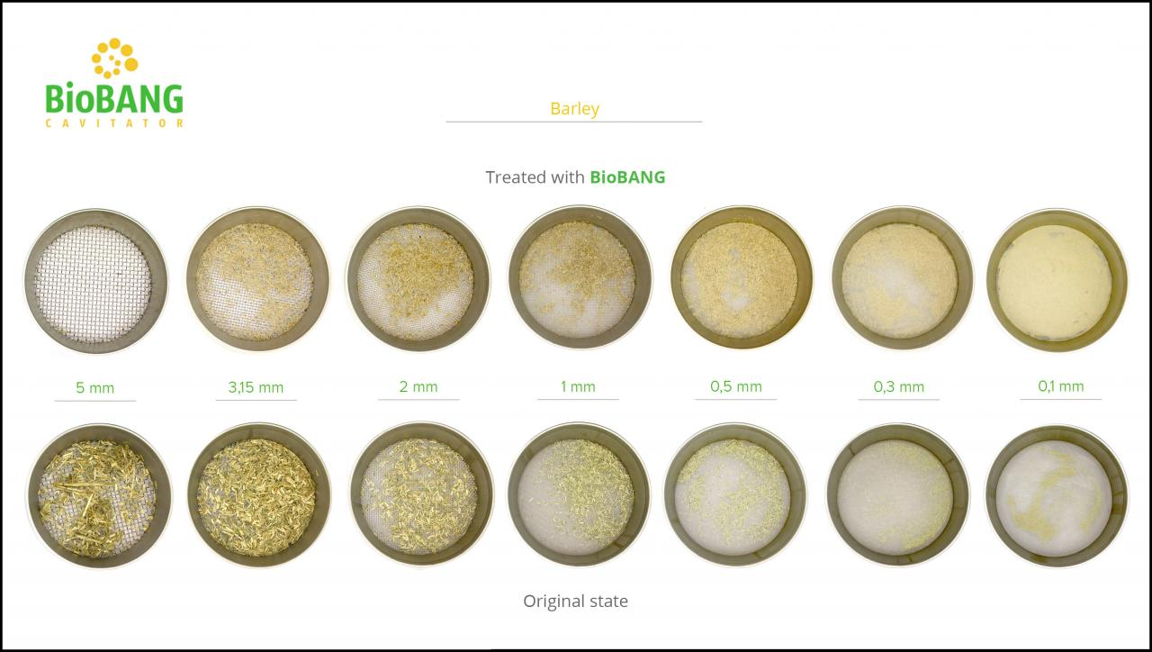 biomass-test-barley-8