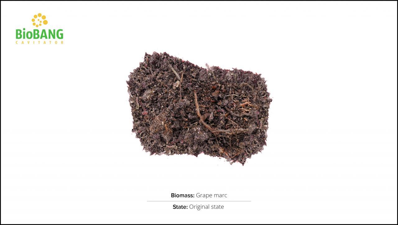 biomass-test-grape-marc-1