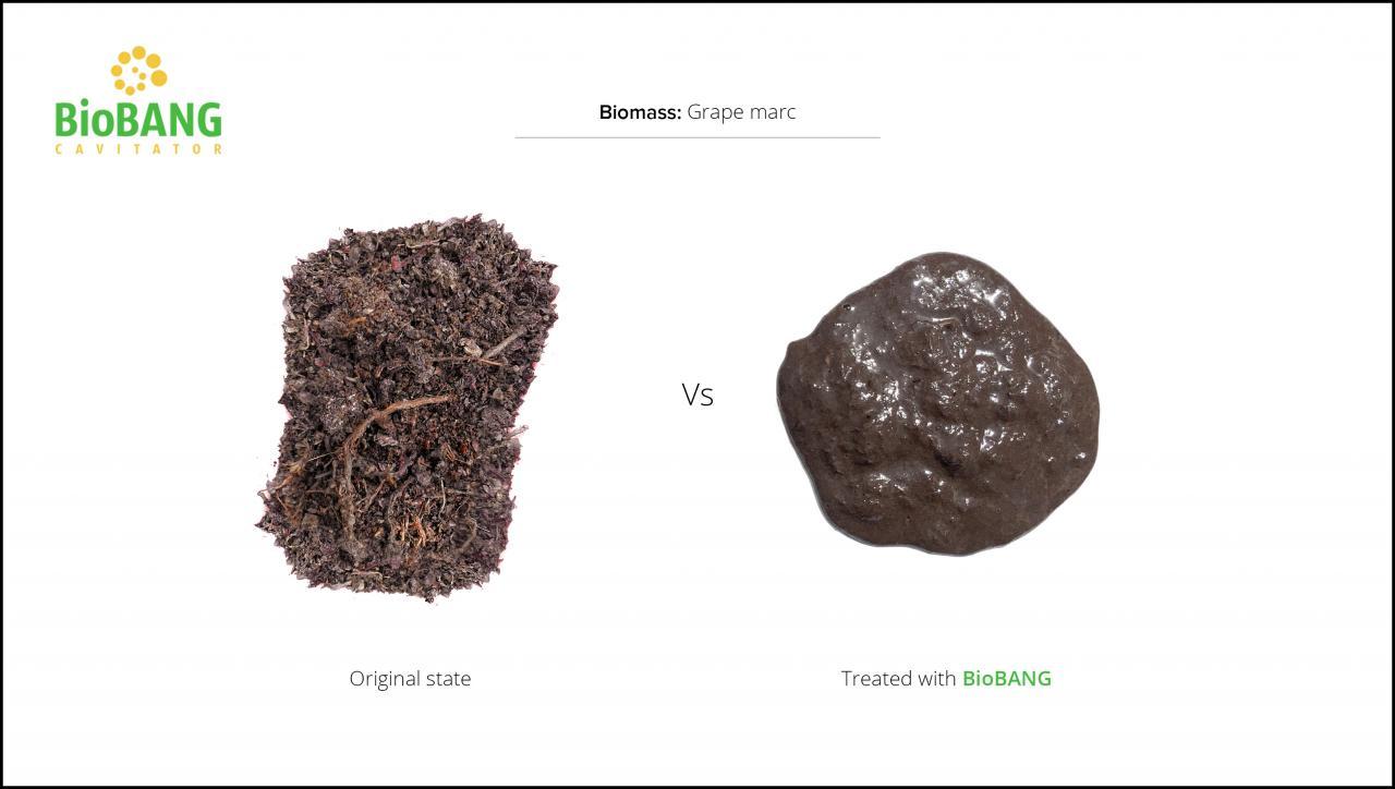 biomass-test-grape-marc-3