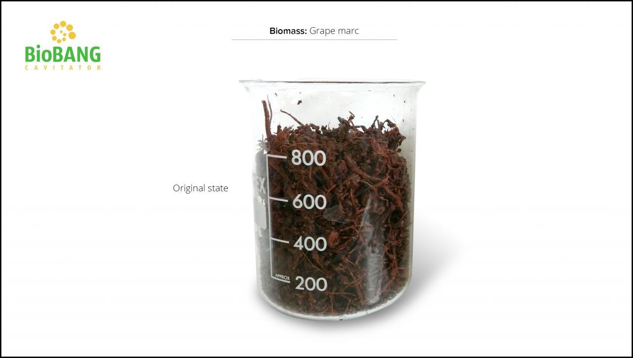biomass-test-grape-marc-5