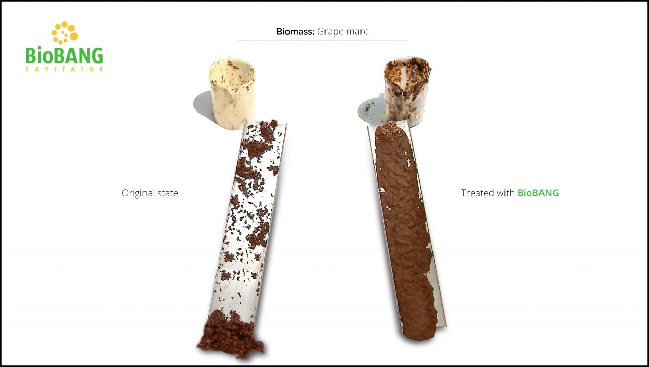 biomass-test-grape-marc-7
