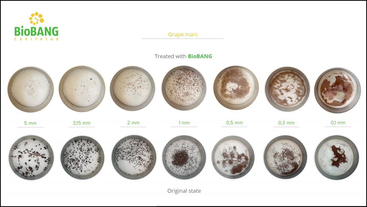 biomass-test-grape-marc-8