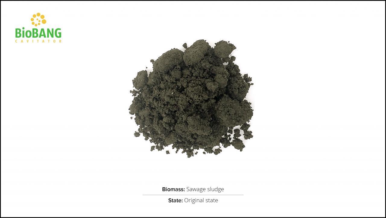 biomass-test-sawage-sludge-1