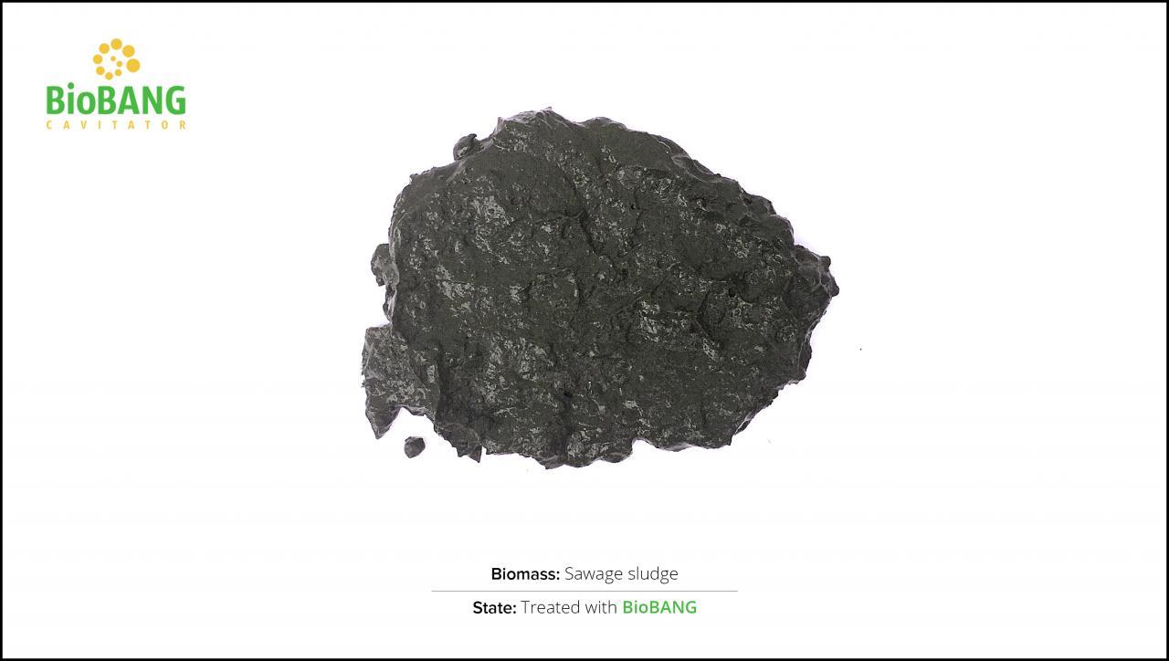 biomass-test-sawage-sludge-2