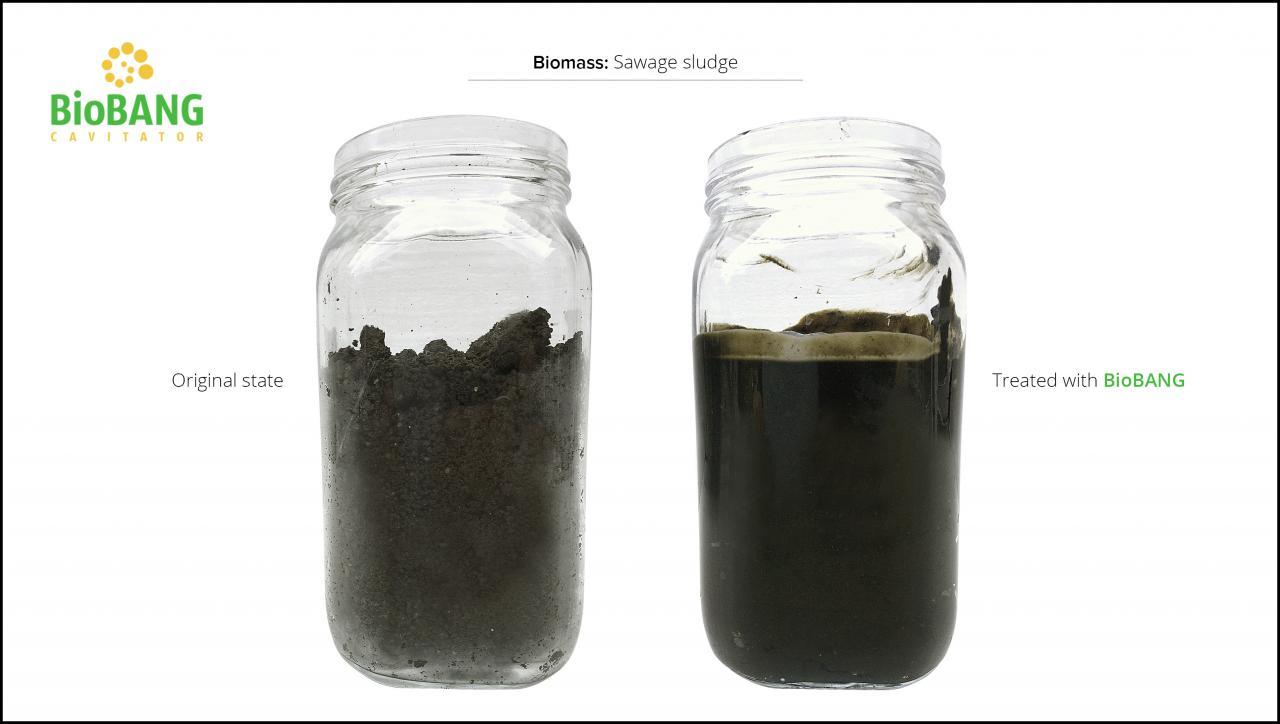 biomass-test-sawage-sludge-4