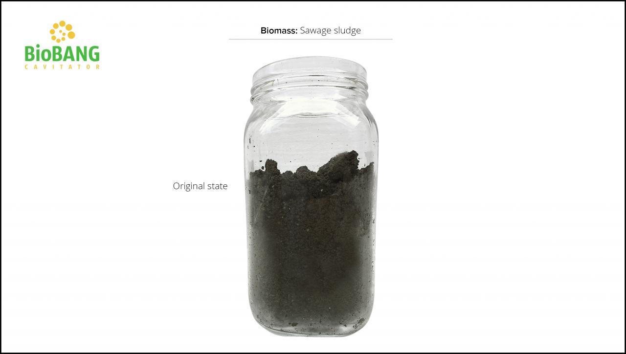 biomass-test-sawage-sludge-5