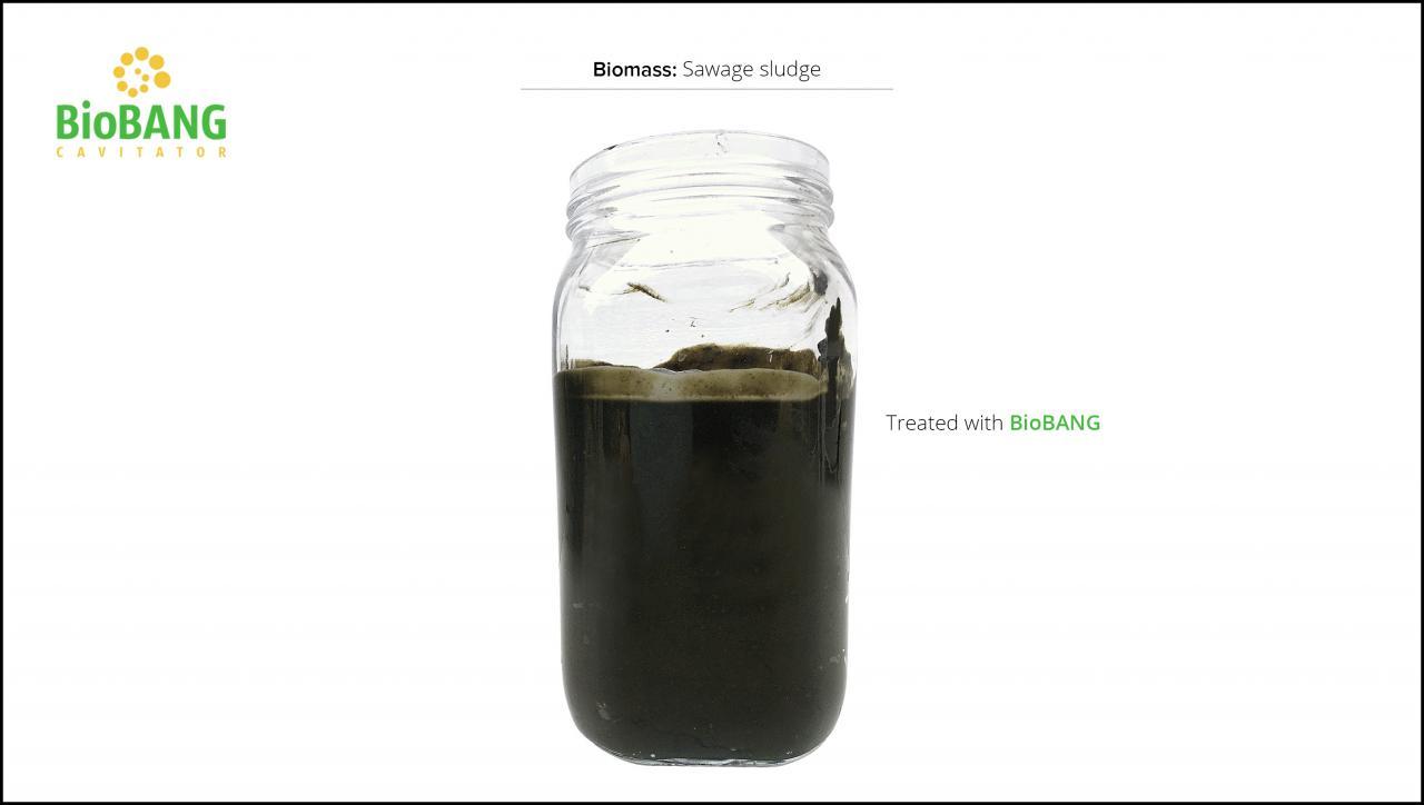 biomass-test-sawage-sludge-6