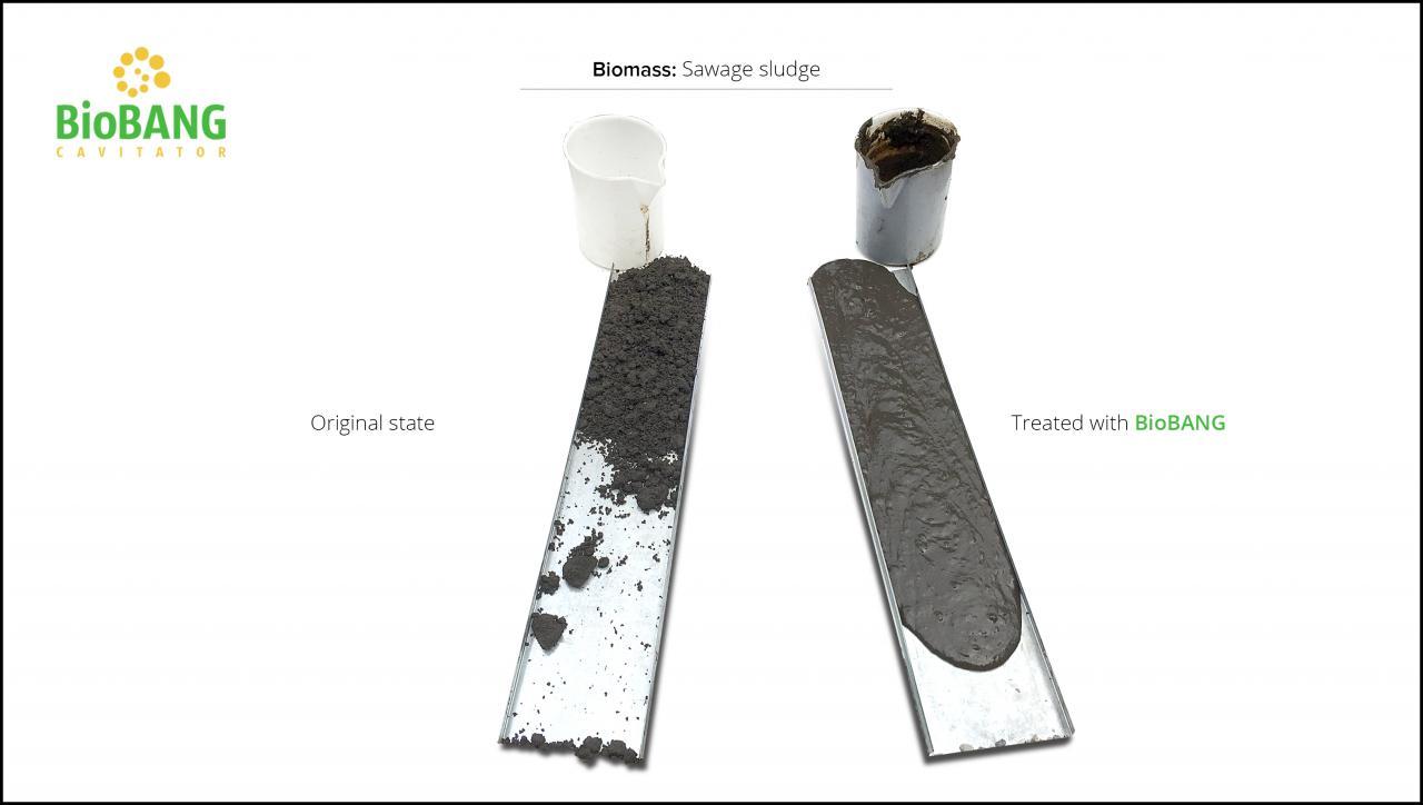 biomass-test-sawage-sludge-7