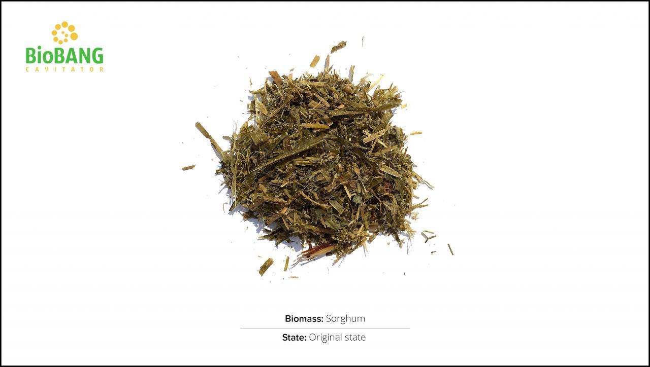 biomass-test-sorghum_1