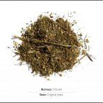 biomass-test-triticale_01