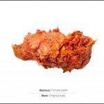 biomass-tomato-peels-1