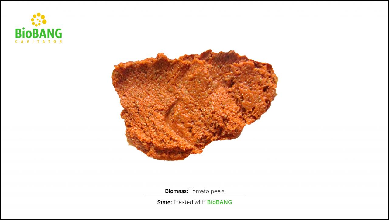 biomass-tomato-peels-2