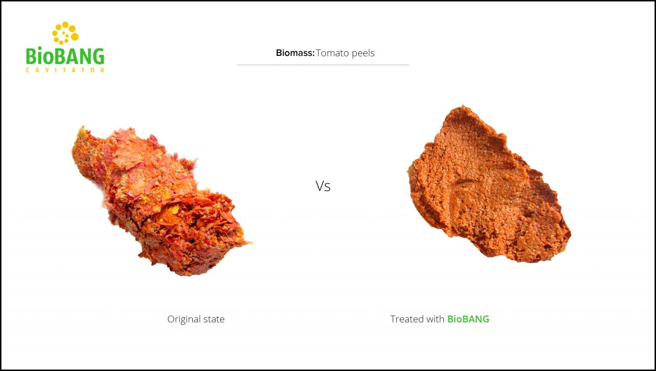 biomass-tomato-peels-3
