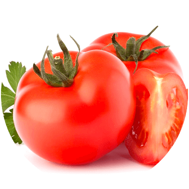 Biomasse test Tomato peels