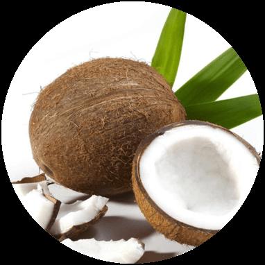 Biomasse test Kokosfibre