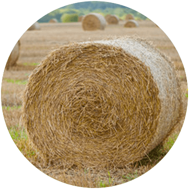 Biomasse Halm