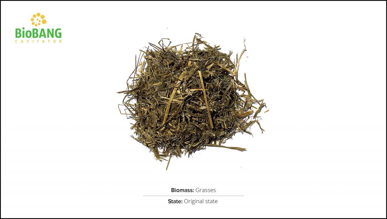 biomasse-test-græs_1