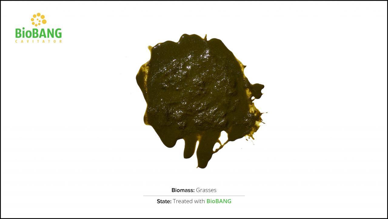 biomasse-test-græs_2