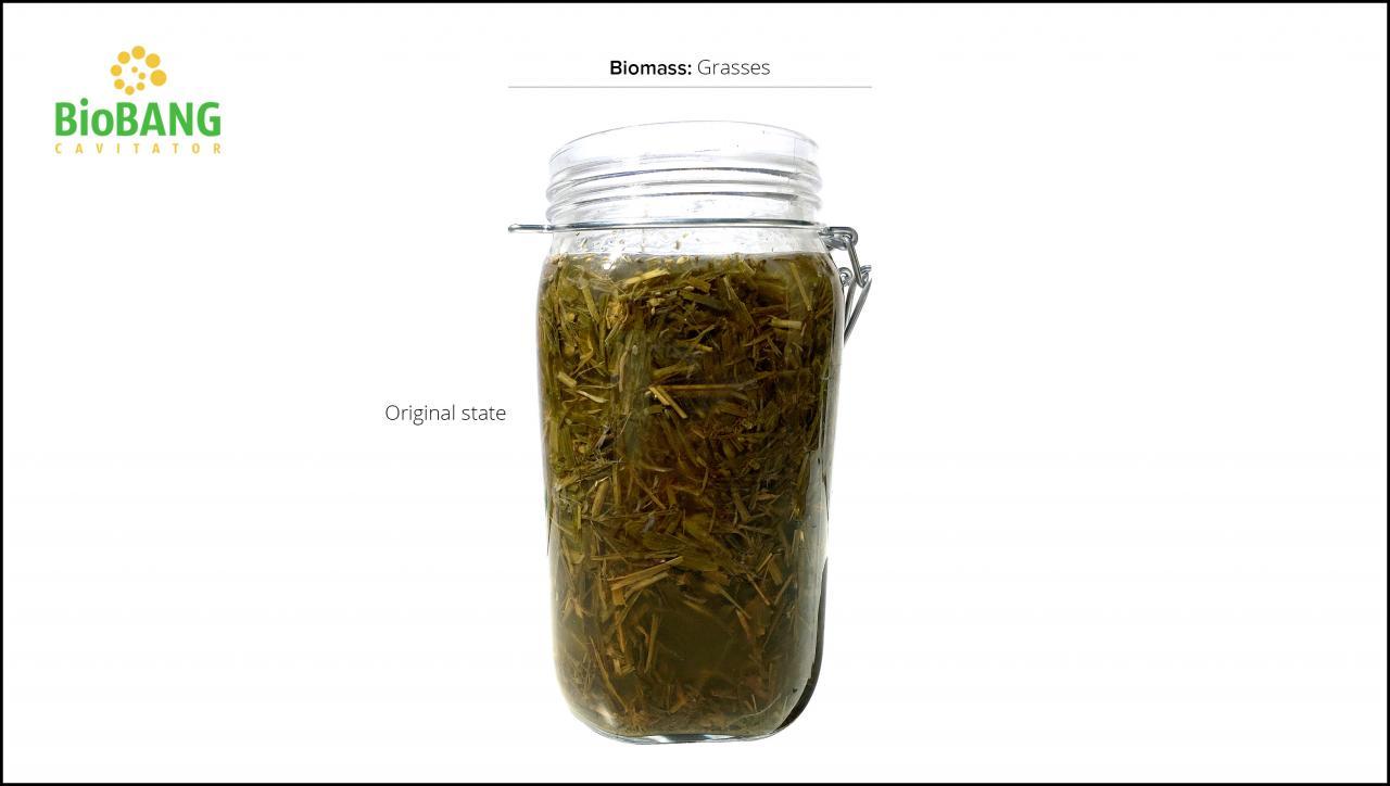 biomasse-test-græs_5