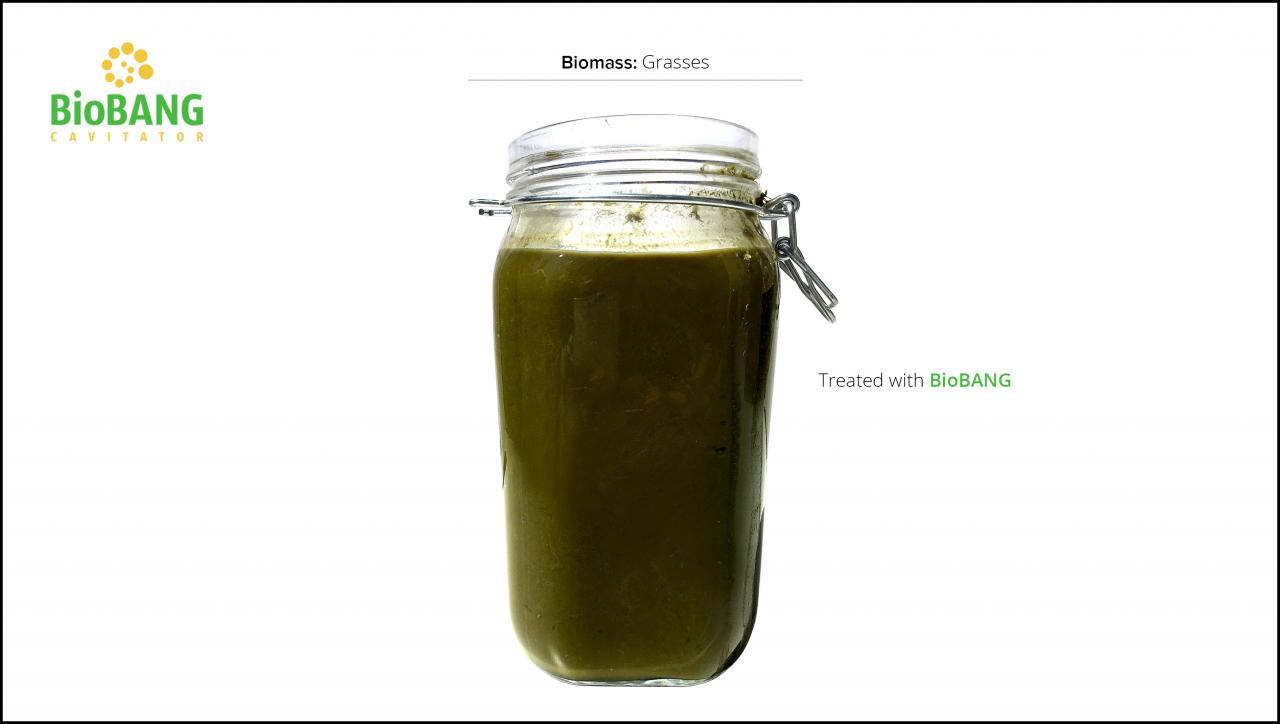 biomasse-test-græs_6
