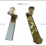 biomasse-test-græs_7