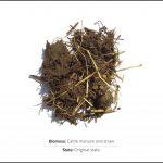 biomasse-test-kvæg-gylle-og-halm_1