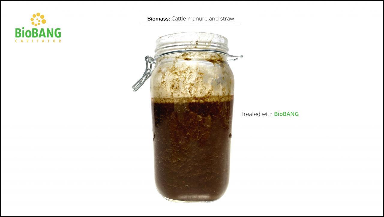 biomasse-test-kvæg-gylle-og-halm_6