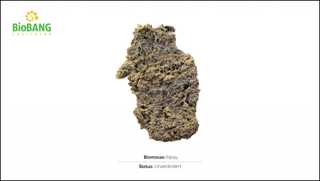 biomassen-test-forsu-1