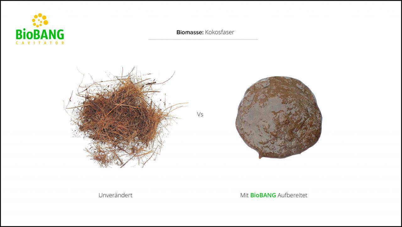 biomassen-test-kokosfaser-3