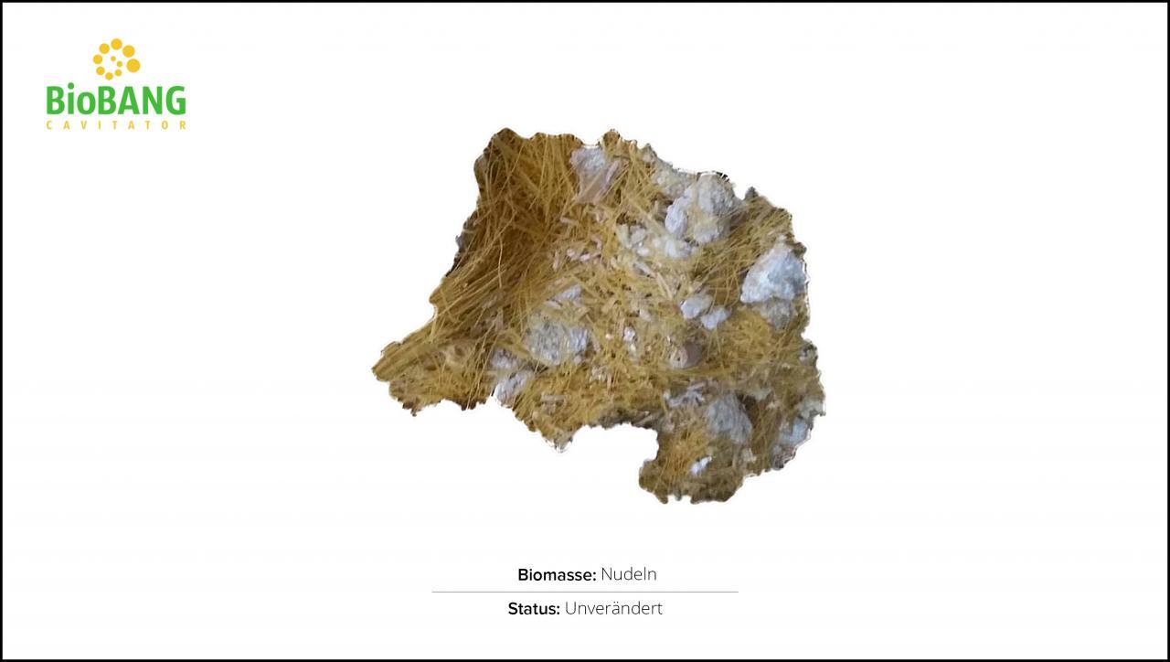 biomassen-test-nudeln-1