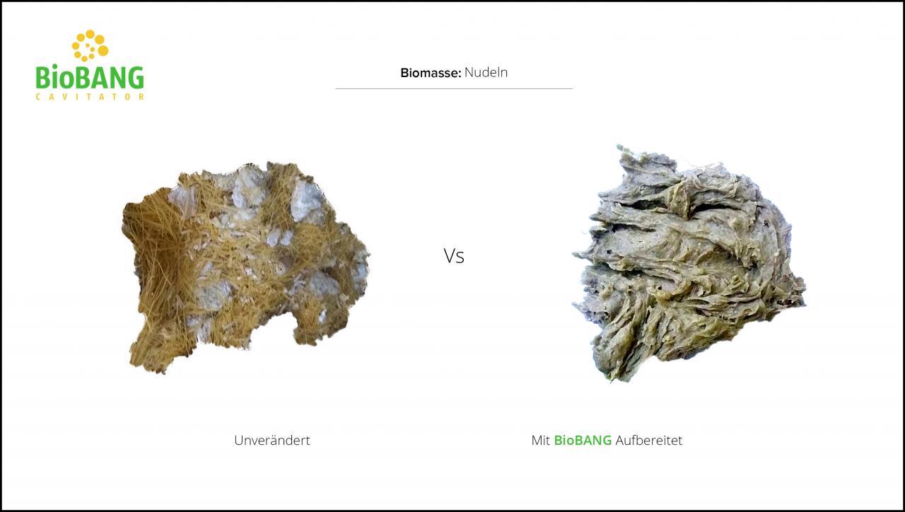 biomassen-test-nudeln-3