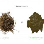 biomassen-test-wiesengras_3