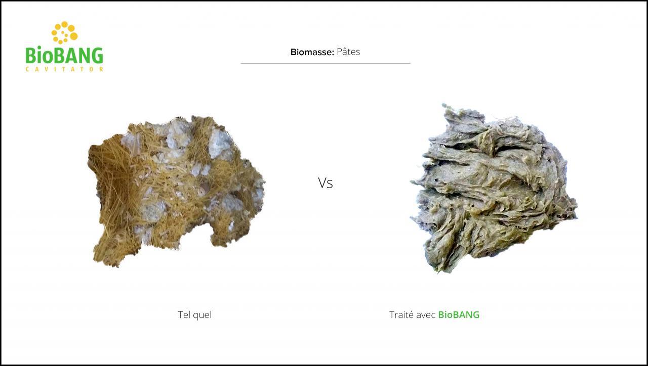 biomasses-test-pates-3