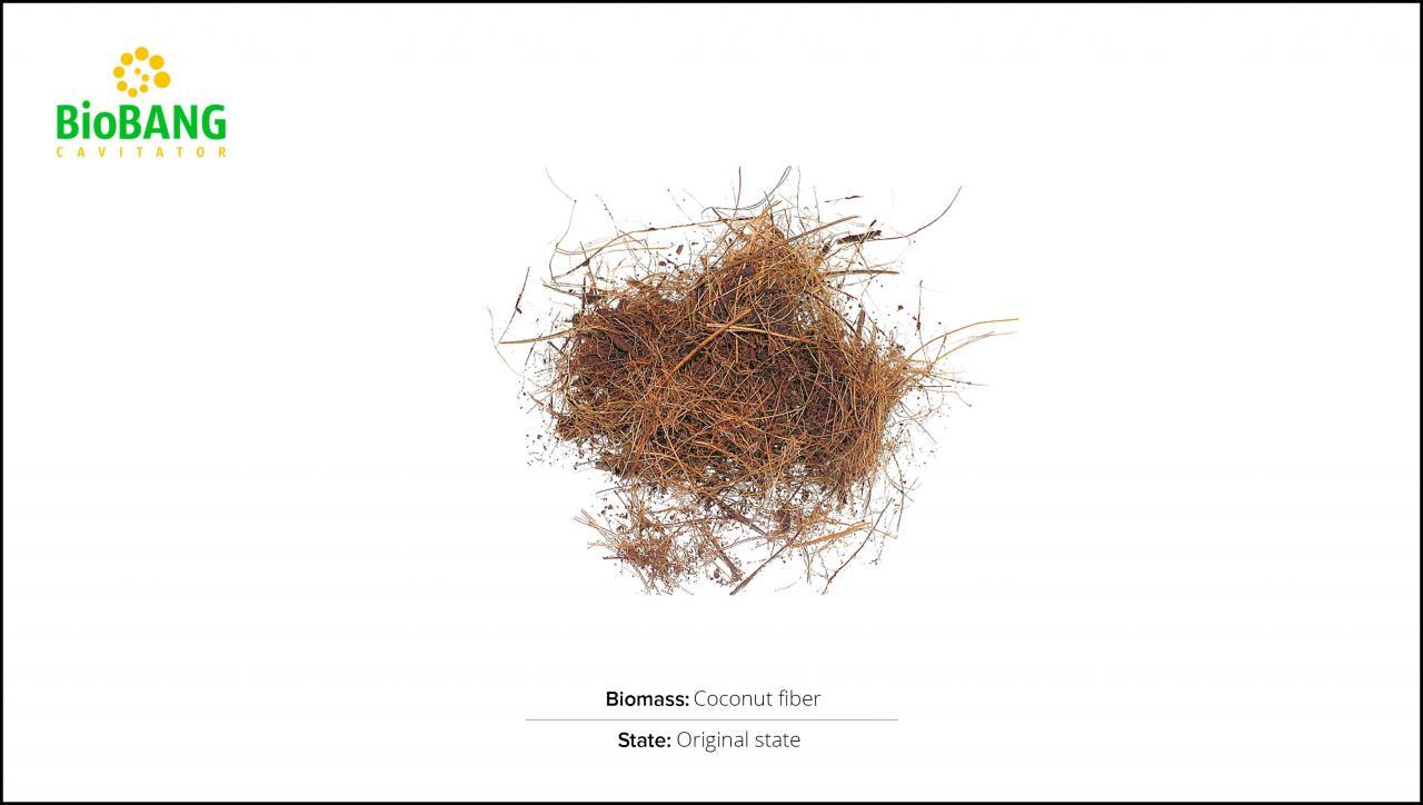 test-biomass-coconut-fiber-1