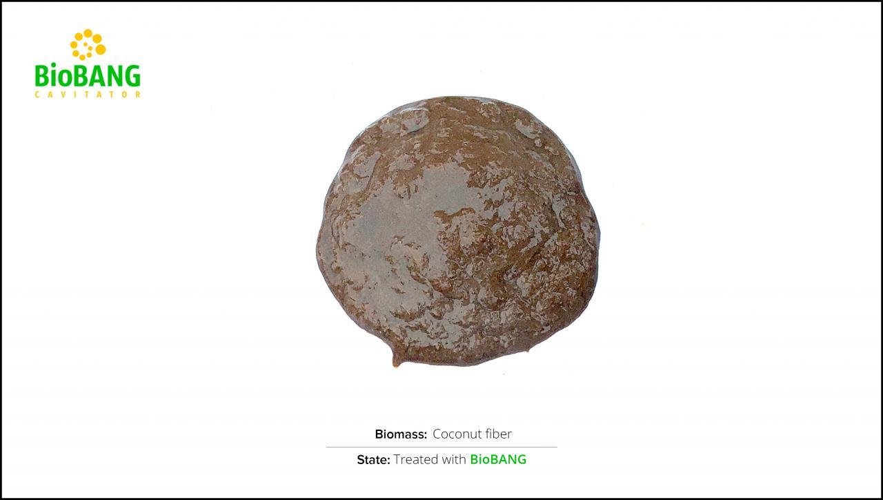 test-biomass-coconut-fiber-2