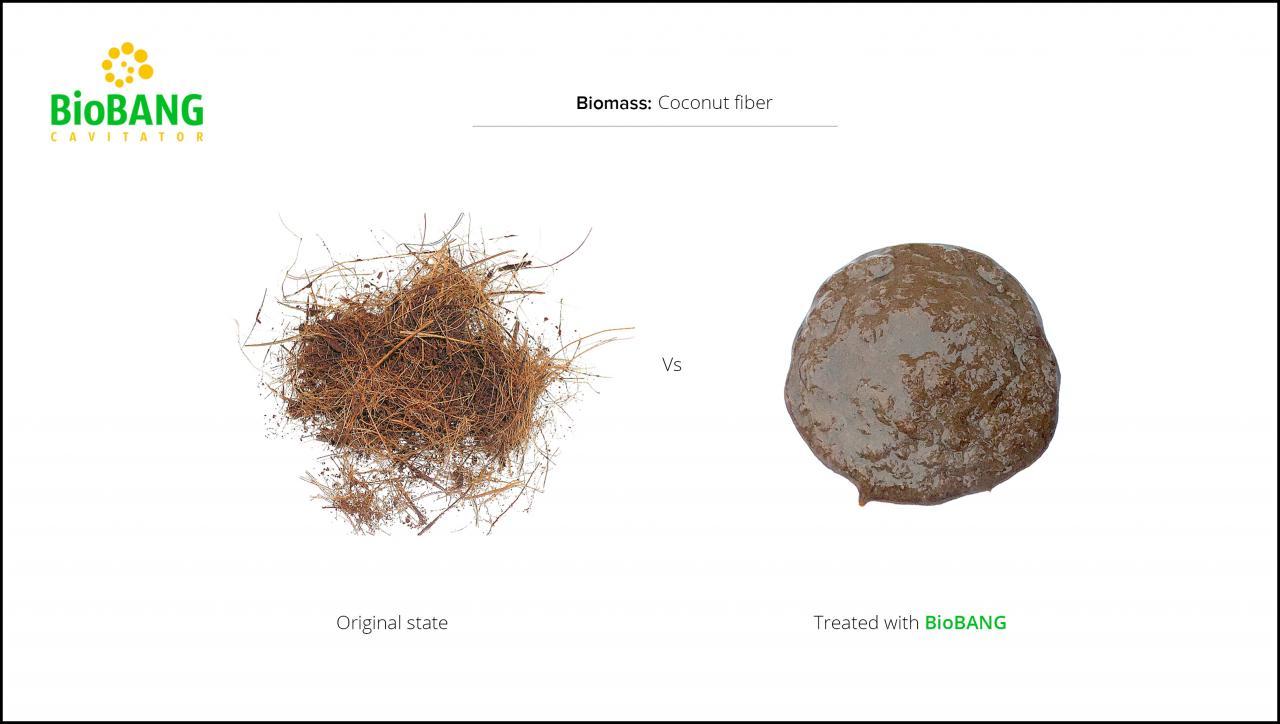 test-biomass-coconut-fiber-3