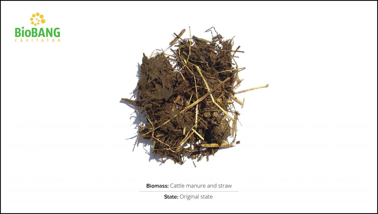 test-biomass_cattle-manure-and-straw_1