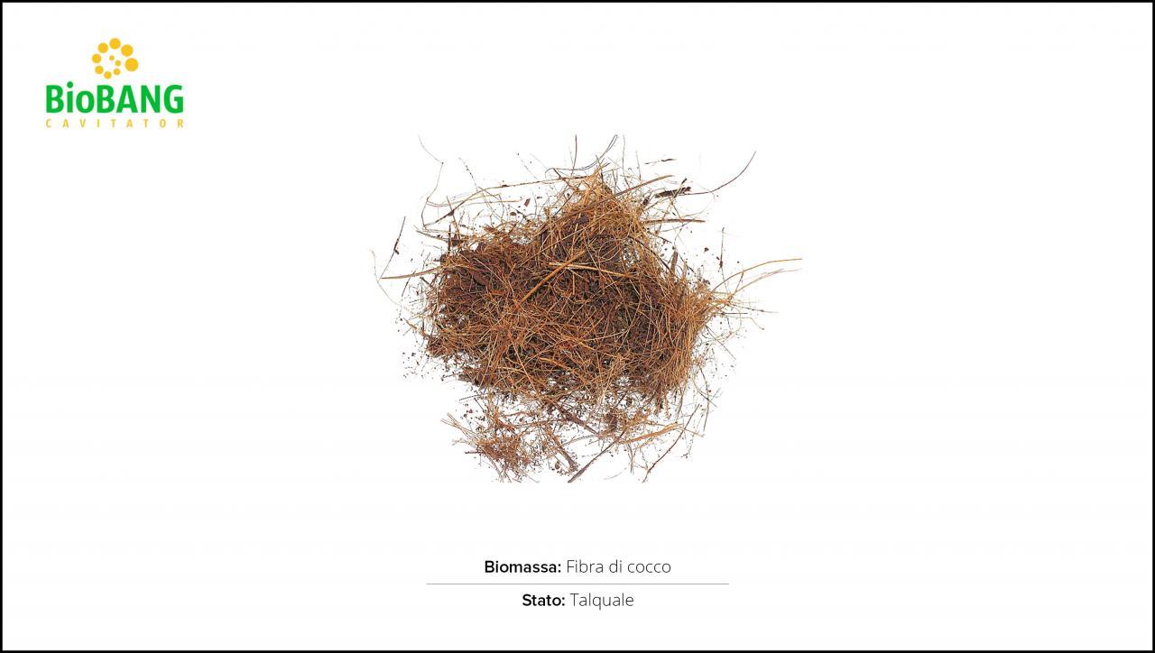 test-biomasse-cocco-1