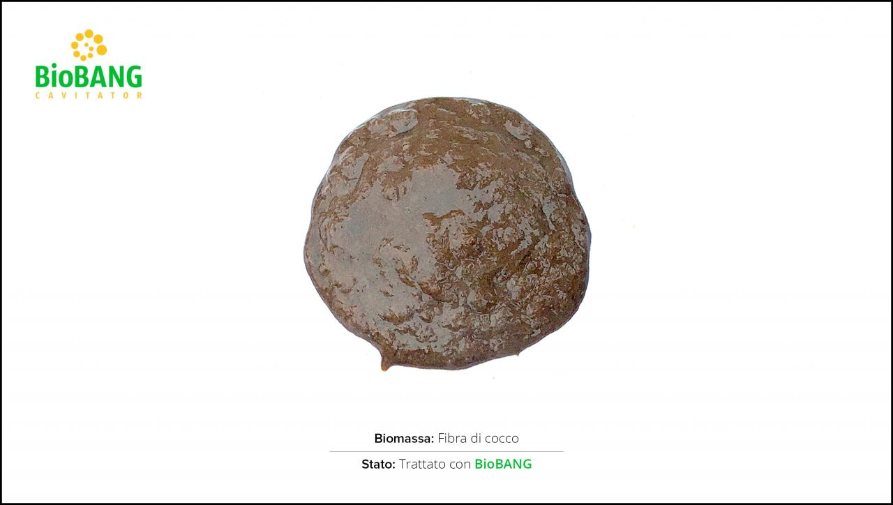 test-biomasse-cocco-2