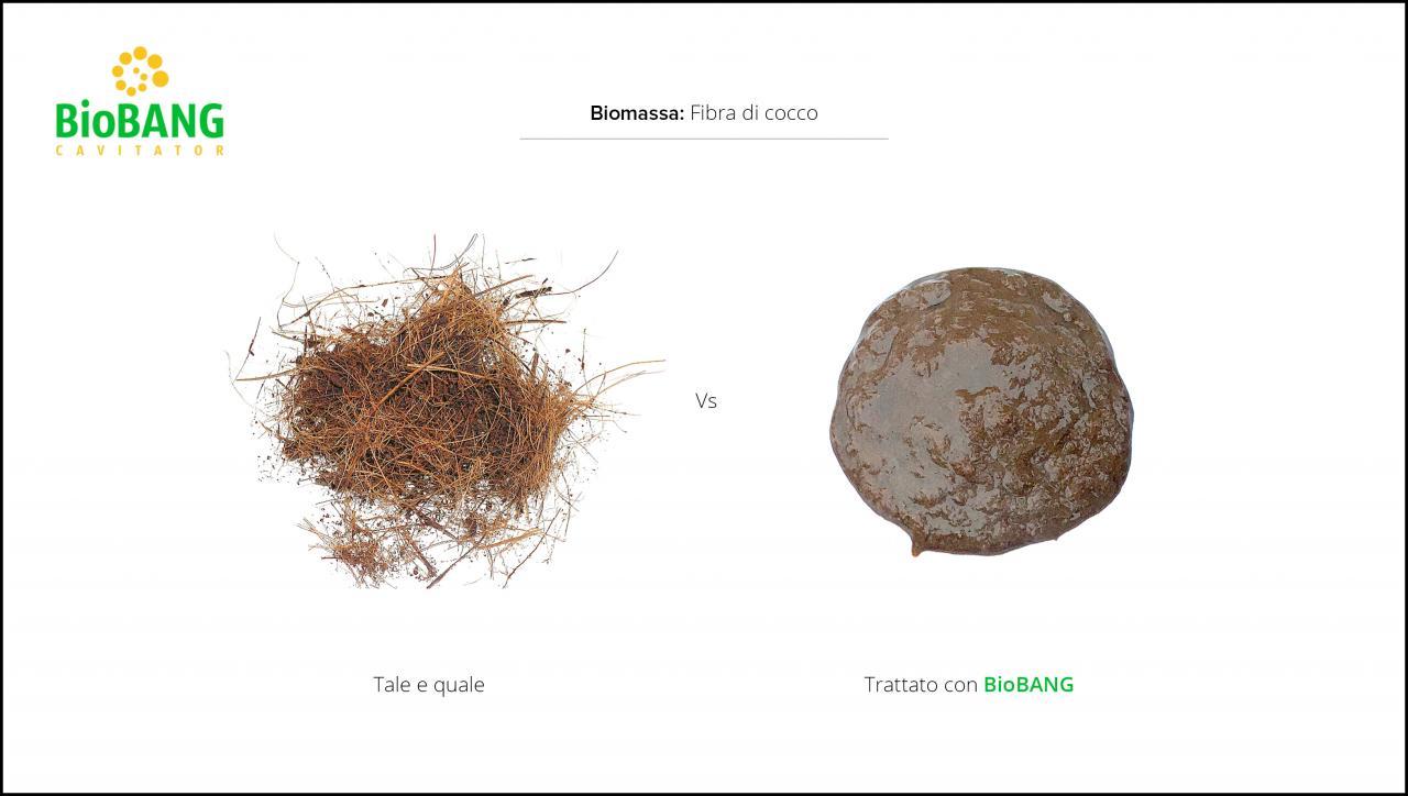 test-biomasse-cocco-3