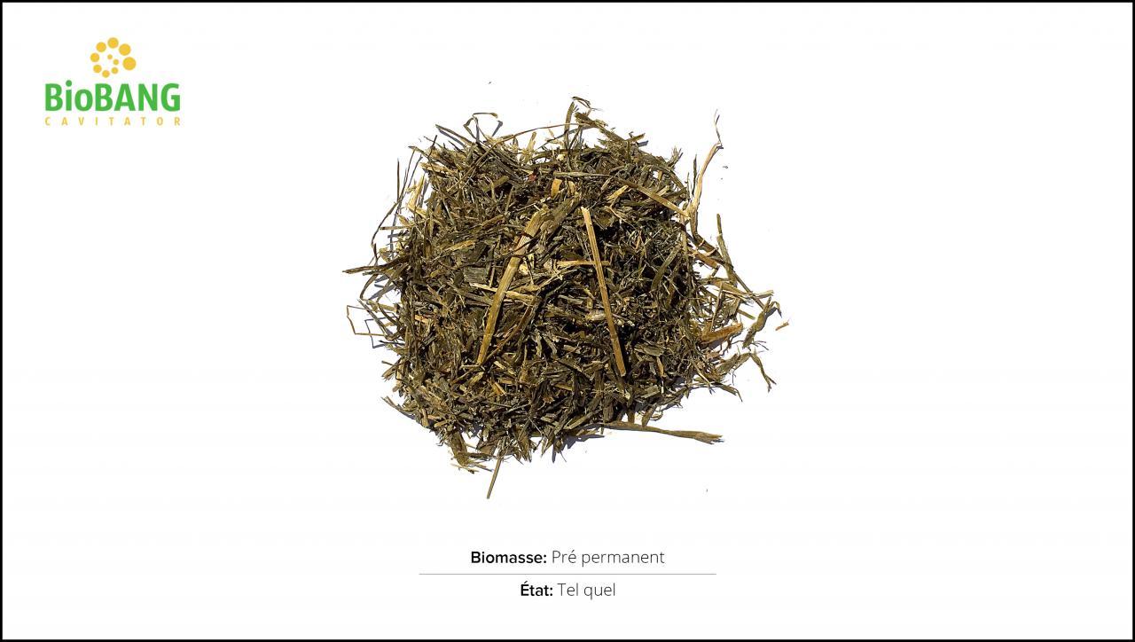 test-biomasses-pre-permanent_1