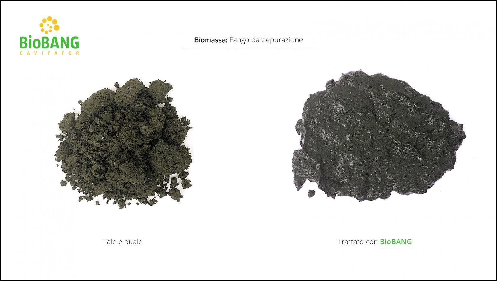 trattamento-biomassa-fango-depurazione