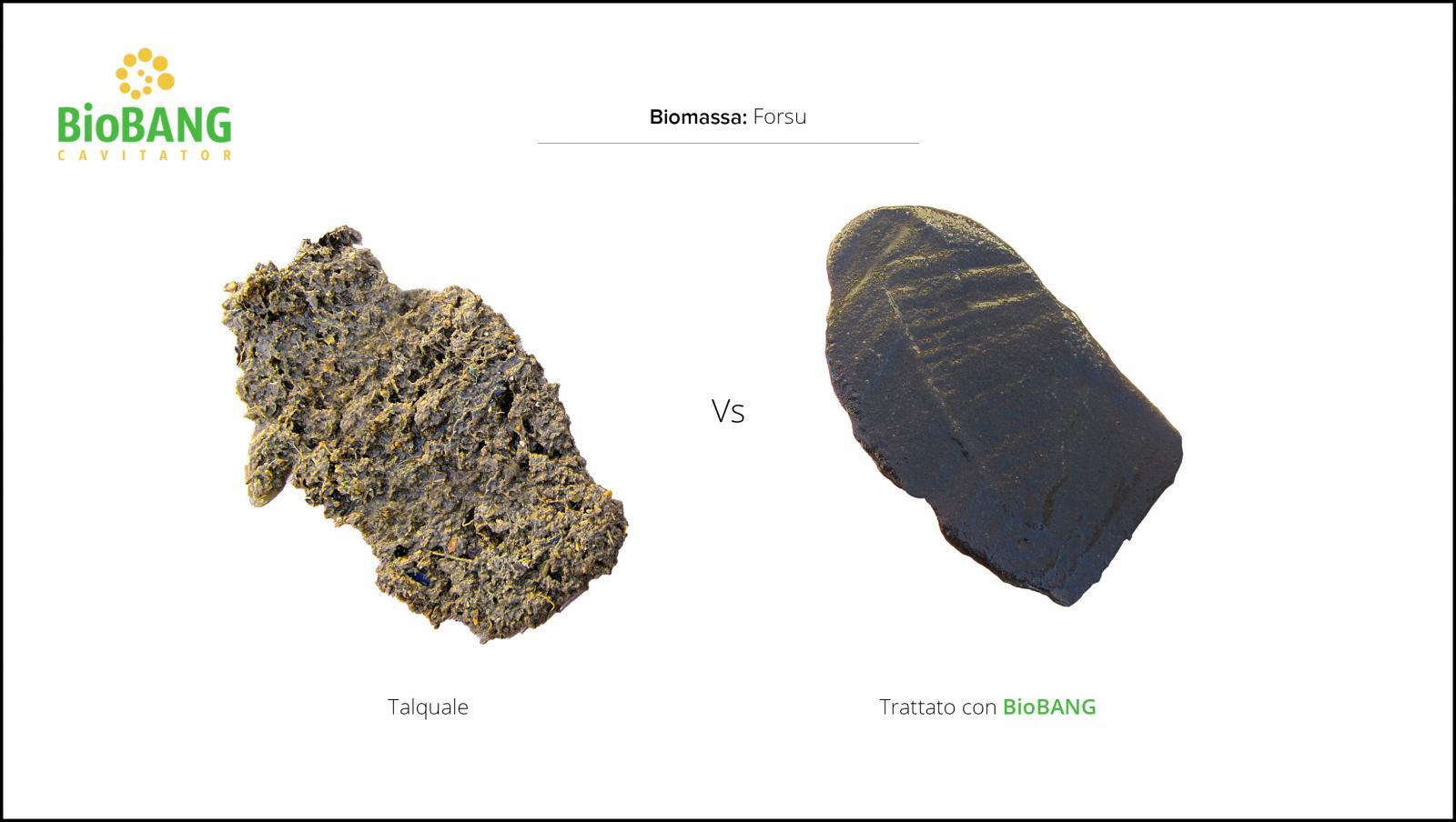 trattamento-biomassa-forsu
