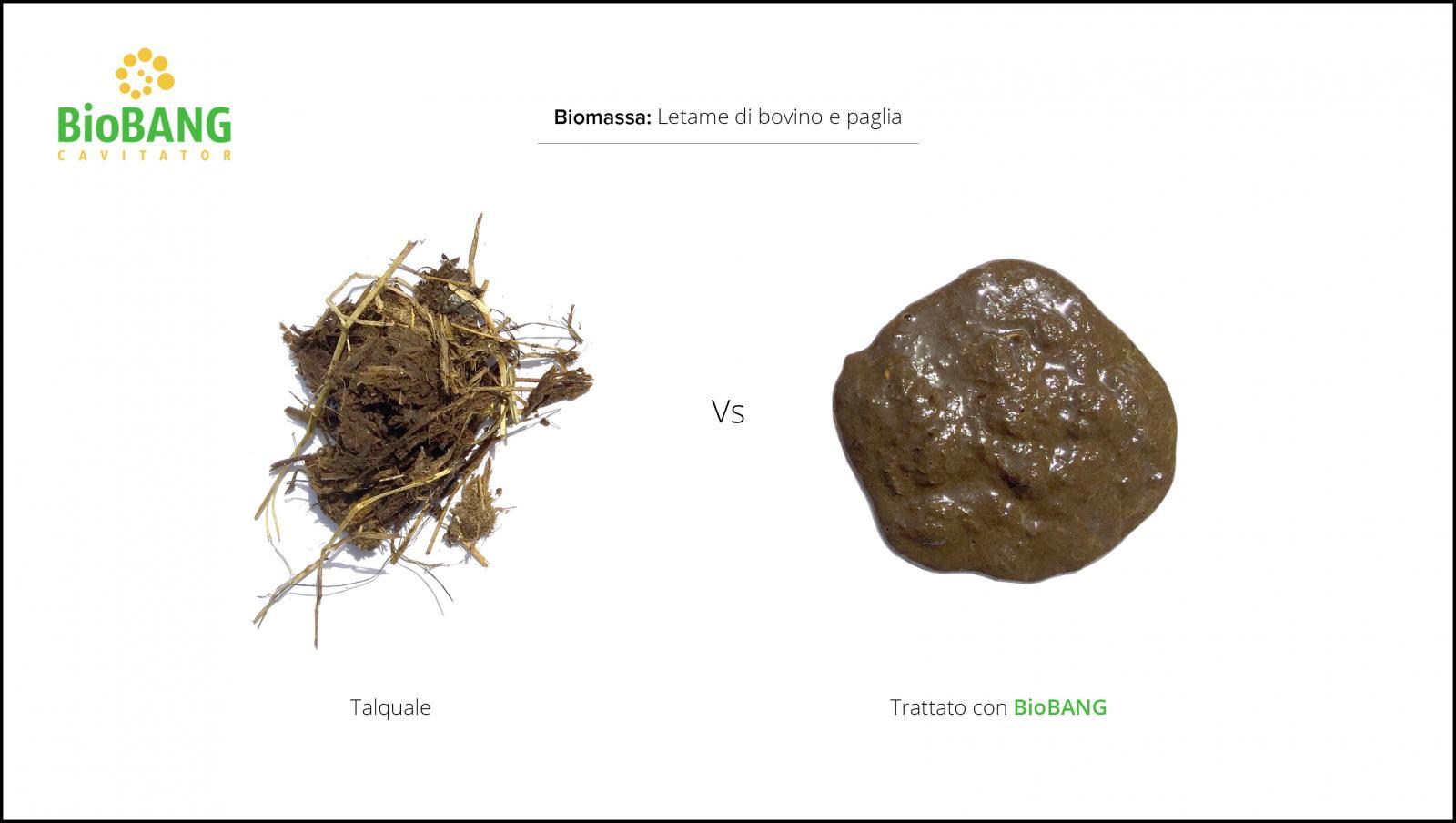 trattamento-biomassa-letame